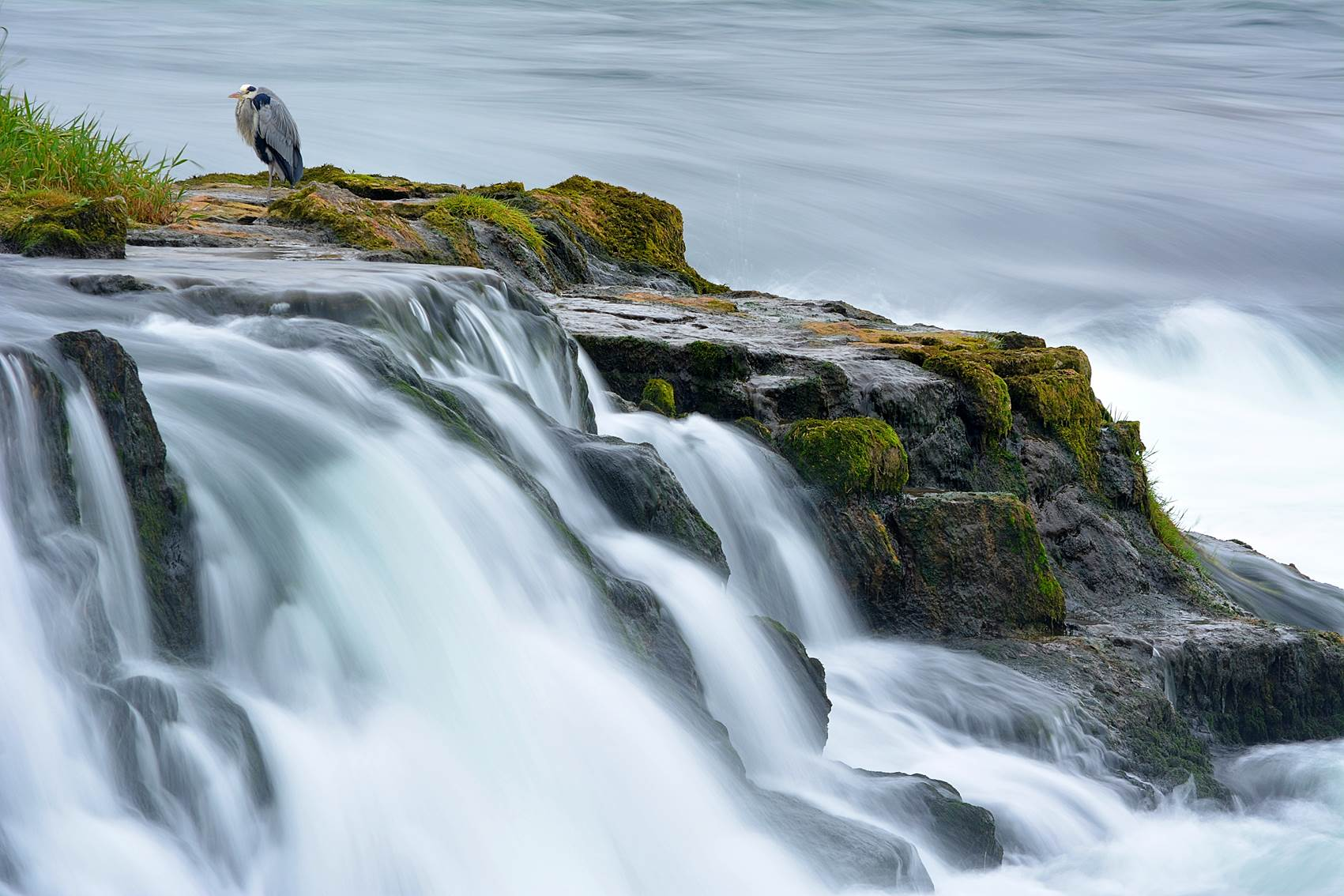 Heron_Waterfall_small
