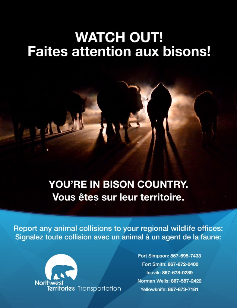 Bison Safety Ad for the Northwest Territories Transportation